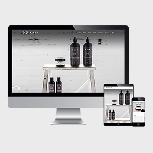 Wordpress website design & Daily Maintenance